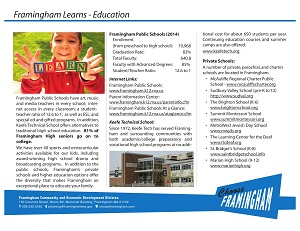 image of a Fact Sheet on the Framignham Schools