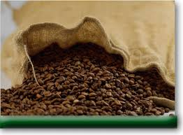 picture of roasted coffee beans spilling out of a burlap sack